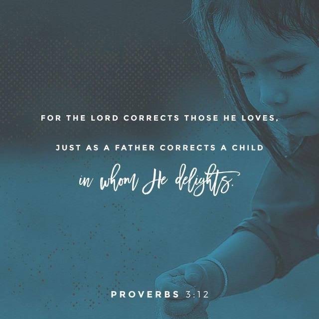 proverbs 3,12